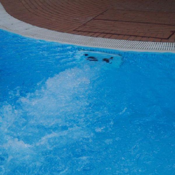 Nuoto controcorrente